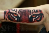 Tiger head tattoo on the arm