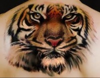 Tiger tattoo large
