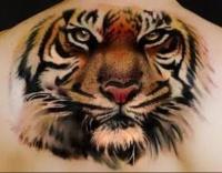 Tiger tattoo large